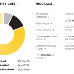 Internationale LIVESTRONG projecten